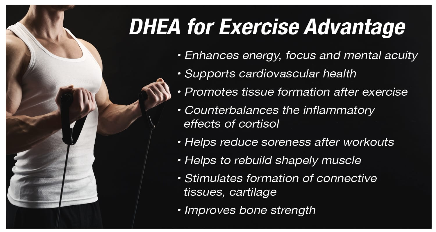 DHEA Exercise Results
